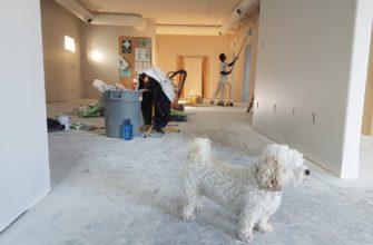 Бизнес на ремонте квартир
