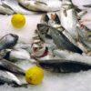 Рыбный магазин, как бизнес